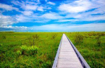 釧路湿原 フリー画像